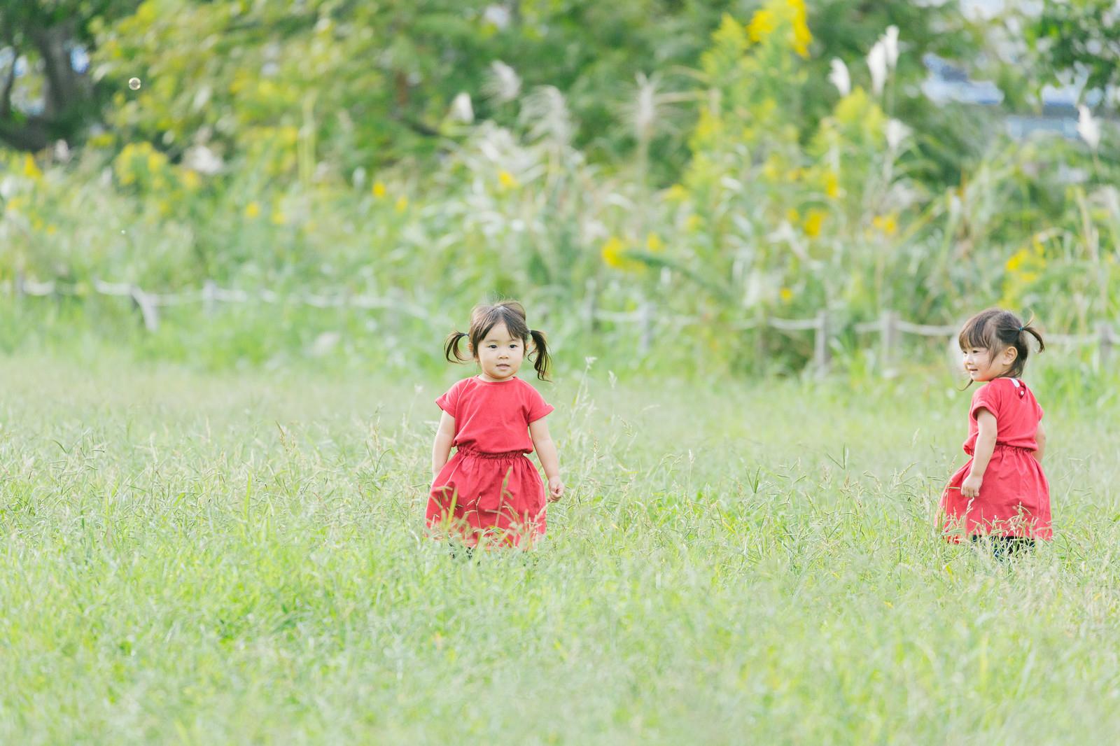 京都府南丹市の空き地で!子供達の霊がそこにいる!?