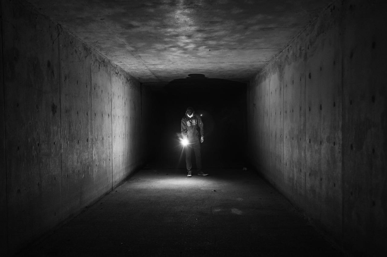 トンネルで拾った猫が連れてきた白い女の心霊の話